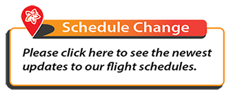 View Flight Flight Schedule