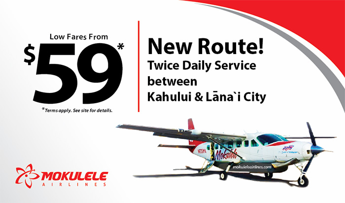 Everyday Low Fares