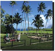 Big Island Tour